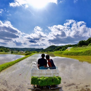 神戸地元の安心、安全なお肉に野菜やお米を食べて頂きたいです。