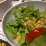 トゥッカーノグリル - サラダでアップ。