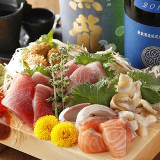 北海道直送!!新鮮な魚介類がたっぷり味わえる「本日の刺し盛」