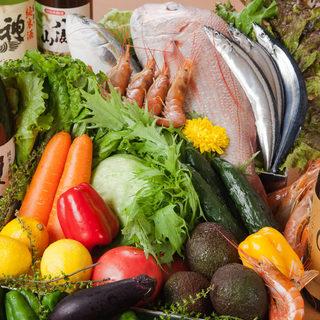 【産地直送】旬の鮮魚を使った絶品魚料理の数々が自慢