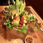 81302626 - 生野菜15種盛り