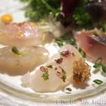 サルーチェ - 魚