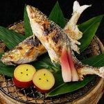 宮した - その時期に合ったお魚をご用意しております。初夏、子持ち鮎の塩焼きでお愉しみください。(7月~10月までのお取り扱いです)