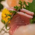 おたる政寿司 - 【魥(さしみ)】、鰤(ぶり)
