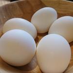 金嶋 - サービスゆで卵