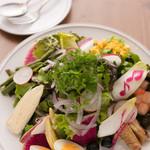 12種類の具材を使ったサラダ 【SALAD PLATE】