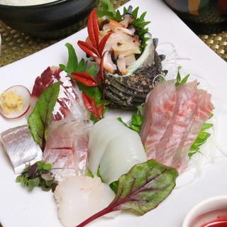 小田原港直送の魚たち