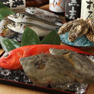 ■毎日届く新鮮魚介をご提供!■
