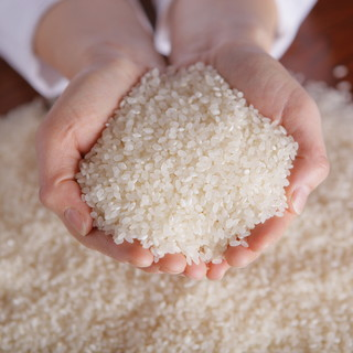 「お米」が主役。