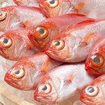 金沢炉端 魚界人 -