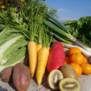 産直野菜をふんだんに使ったお料理が自慢!