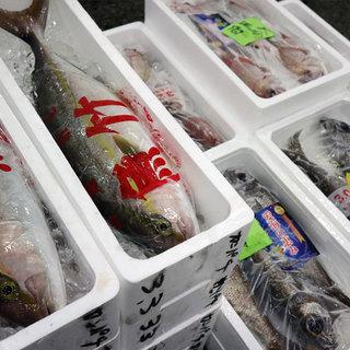 全国47漁港より旬の鮮魚を毎日入荷。