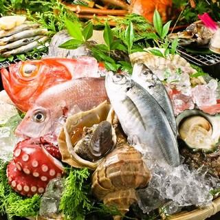 羽田市場直送の新鮮な魚介類を使用した逸品や創作和食を堪能★