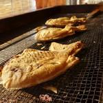鯛春 - 料理写真:天然真鯛(静岡県太平洋御前崎沖)
