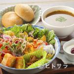 ピアノカフェ ルコラ - 色とりどりの野菜がたっぷり摂れる『ベジプレートセット』(数量限定)
