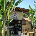 米市農園 -