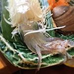 日本大漁物語 きじま - 料理写真:がおー!