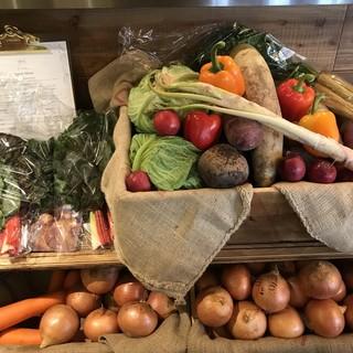 毎朝契約農家から届くミネラルとビタミンが豊富な野菜たち