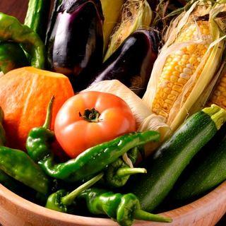 野菜は横浜地野菜◎