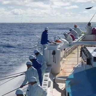 鰹一本釣り日本一の鰹船明神丸の提携店