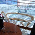カフェ・タピロス - 店内から見る窓の外