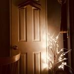 デュークサルーン - 秘密の扉を開いてみますか❓