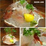 あぶら坊主 - ホウボウ。あぶら坊主(和歌山市)食彩品館.jp撮影
