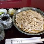 うどん専庵 与志川 - 料理写真:皿もりうどん(630円)_2011-06-09
