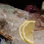 丸秀鮮魚店 - イカの生造り