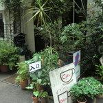 サロン・ド・カモシタ - 入口