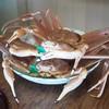 松川 - 料理写真:蟹っ!