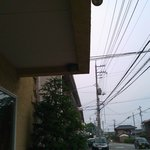 8265201 - 軒先のツバメの巣