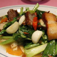 スコンター - タイ野菜と揚げ豚のオイスターソース炒め