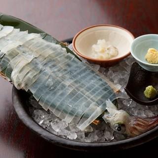日本各地の漁場から活きたまま運ばれる「名物!活きイカ」