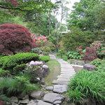 8273883 - 素敵な日本庭園です♪