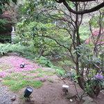 8273886 - 日本庭園を見ながらのお食事!