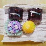 御菓子司 松風堂 - 季節の生菓子