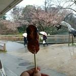 井の頭恩賜公園ボート売店 - 三福だんご(くるみ味噌)