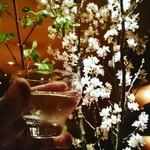 82831185 - 桜と共に冷酒で♡