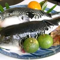 関の瀬 - ふぐコース料理 冬季限定