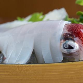 海老だけでなくイカも凄いんです。