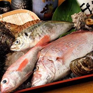 【厳選した魚】三河湾や伊勢湾で獲れた魚介を中心に使用♪