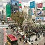 ジャン・フランソワ - 岡本太郎さんの絵が飾ってある通路からハチ公広場を見下ろして