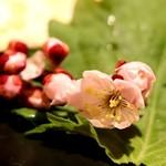 ダイニング さんさん - お通しの飾りの桜