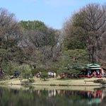 六義園 吹上茶屋 - 池越しに見える吹上茶屋