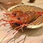 鮨 銀座 おのでら - 北海道産のボタン海老    ピチピチです♪
