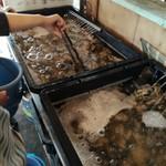 牡蛎処 桝政 - 牡蠣がたっぷり