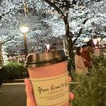83041634 - 夜桜とカカオティー