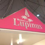 ルピナス -