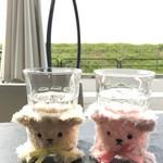 タリーズコーヒー - 遠足に行き日向ぼっこ中の2匹